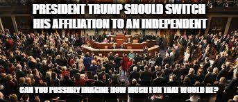 President Trump: Become an Independent! | PRESIDENT TRUMP SHOULD SWITCH HIS AFFILIATION TO AN INDEPENDENT CAN YOU POSSIBLY IMAGINE HOW MUCH FUN THAT WOULD BE? | image tagged in politics,political,political meme,donald trump | made w/ Imgflip meme maker