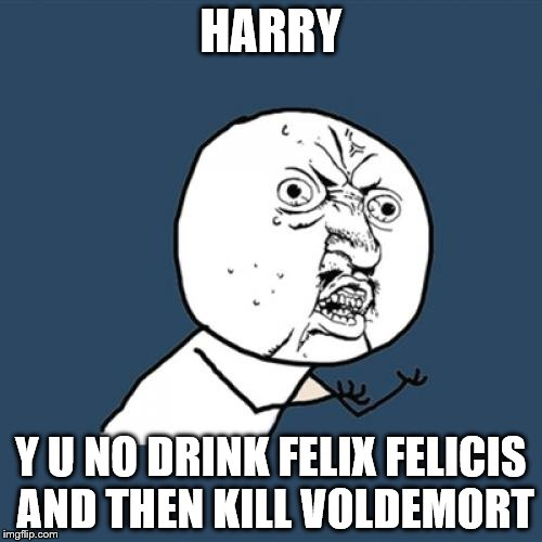 Y U No Meme | HARRY Y U NO DRINK FELIX FELICIS AND THEN KILL VOLDEMORT | image tagged in memes,y u no | made w/ Imgflip meme maker