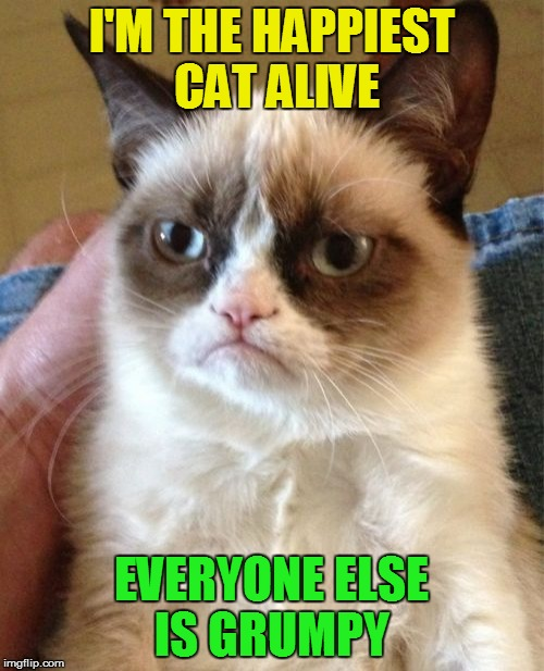 Grumpy Cat Meme | I'M THE HAPPIEST CAT ALIVE EVERYONE ELSE IS GRUMPY | image tagged in memes,grumpy cat | made w/ Imgflip meme maker