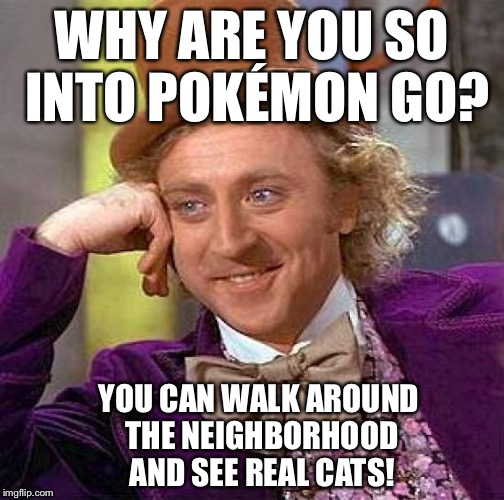 Creepy Condescending Wonka Meme | WHY ARE YOU SO INTO POKÉMON GO? YOU CAN WALK AROUND THE NEIGHBORHOOD AND SEE REAL CATS! | image tagged in memes,creepy condescending wonka | made w/ Imgflip meme maker