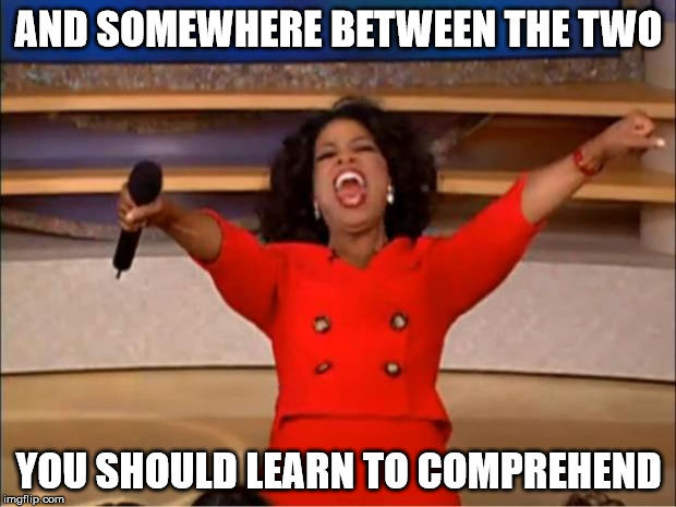Oprah You Get A Meme | AND SOMEWHERE BETWEEN THE TWO YOU SHOULD LEARN TO COMPREHEND | image tagged in memes,oprah you get a | made w/ Imgflip meme maker