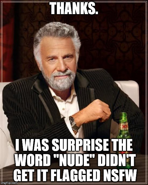 "The Most Interesting Man In The World Meme | THANKS. I WAS SURPRISE THE WORD ""NUDE"" DIDN'T GET IT FLAGGED NSFW 
