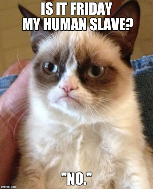 Grumpy Cat Meme | IS IT FRIDAY MY HUMAN SLAVE? ''NO.'' | image tagged in memes,grumpy cat | made w/ Imgflip meme maker