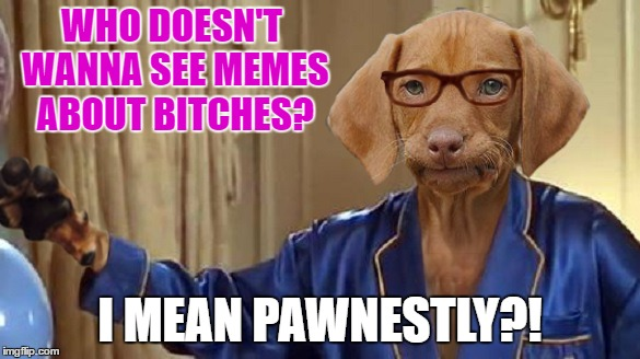 WHO DOESN'T WANNA SEE MEMES ABOUT B**CHES? I MEAN PAWNESTLY?! | made w/ Imgflip meme maker