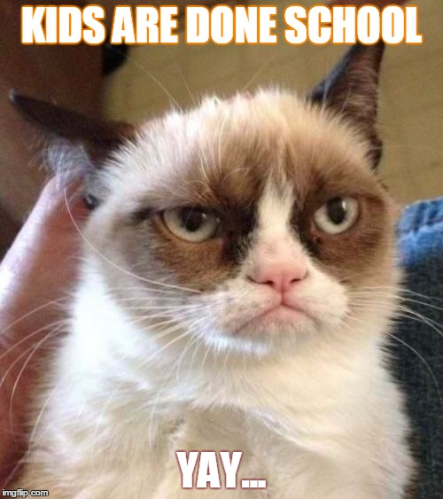 Grumpy Cat Reverse Meme Imgflip The gif and the video are also known as vibing cat and grooving cat. grumpy cat reverse meme imgflip