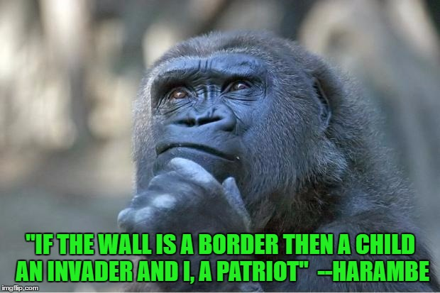"Perspective | ""IF THE WALL IS A BORDER THEN A CHILD AN INVADER AND I, A PATRIOT""  --HARAMBE 