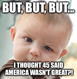 Skeptical Baby Meme | BUT, BUT, BUT... I THOUGHT 45 SAID AMERICA WASN'T GREAT?! | image tagged in memes,skeptical baby | made w/ Imgflip meme maker