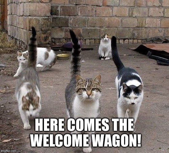 HERE COMES THE WELCOME WAGON! | made w/ Imgflip meme maker