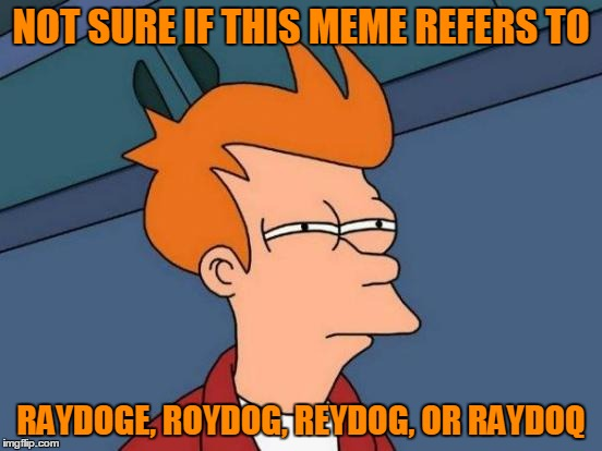 Futurama Fry Meme | NOT SURE IF THIS MEME REFERS TO RAYDOGE, ROYDOG, REYDOG, OR RAYDOQ | image tagged in memes,futurama fry | made w/ Imgflip meme maker