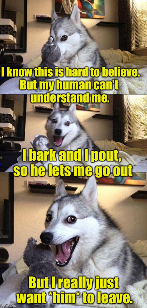 Limerick Week (a MnMinPhx event) | I know this is hard to believe. But I really just want *him* to leave. I bark and I pout, so he lets me go out But my human can't understand | image tagged in bad pun dog,limerick week | made w/ Imgflip meme maker