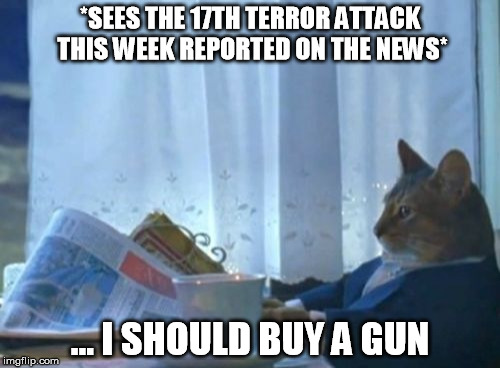 Meanwhile, in the Europe ... | *SEES THE 17TH TERROR ATTACK THIS WEEK REPORTED ON THE NEWS* ... I SHOULD BUY A GUN | image tagged in memes,i should buy a boat cat,terrorism,worried,gun,cats with guns | made w/ Imgflip meme maker