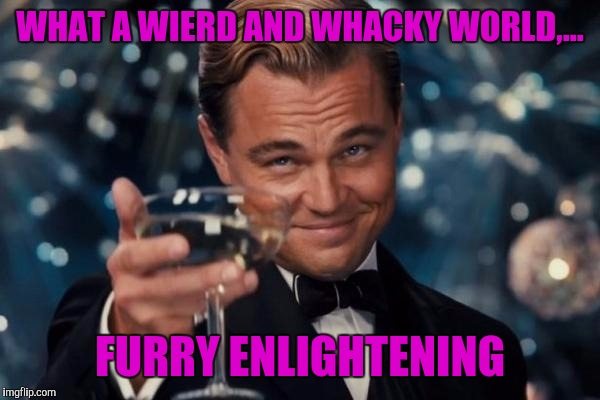 Leonardo Dicaprio Cheers Meme | WHAT A WIERD AND WHACKY WORLD,... FURRY ENLIGHTENING | image tagged in memes,leonardo dicaprio cheers | made w/ Imgflip meme maker