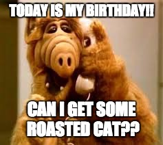 alf | TODAY IS MY BIRTHDAY!! CAN I GET SOME ROASTED CAT?? | image tagged in alf | made w/ Imgflip meme maker