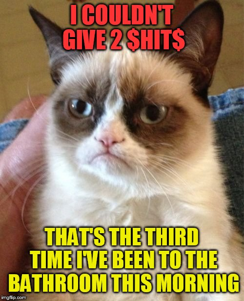 Must have been something he ate | I COULDN'T GIVE 2 $HIT$ THAT'S THE THIRD TIME I'VE BEEN TO THE BATHROOM THIS MORNING | image tagged in memes,grumpy cat | made w/ Imgflip meme maker