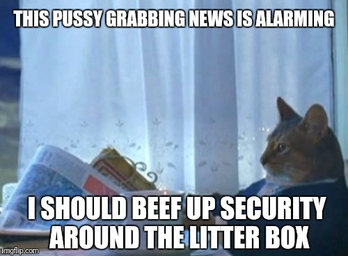 I Should Buy A Boat Cat Meme | THIS PUSSY GRABBING NEWS IS ALARMING I SHOULD BEEF UP SECURITY AROUND THE LITTER BOX | image tagged in memes,i should buy a boat cat | made w/ Imgflip meme maker