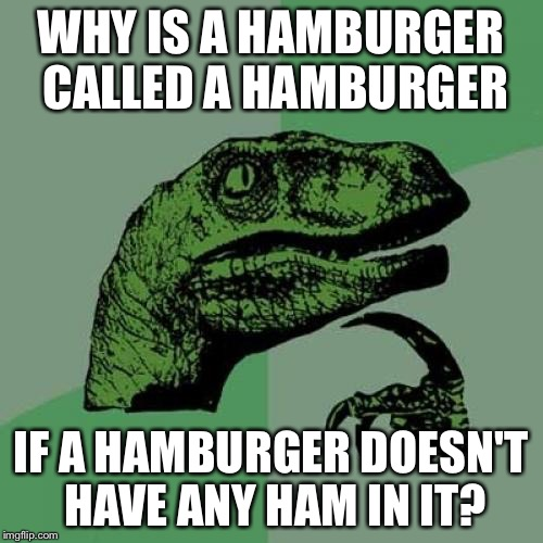 Hamburger Questions? | WHY IS A HAMBURGER CALLED A HAMBURGER IF A HAMBURGER DOESN'T HAVE ANY HAM IN IT? | image tagged in memes,philosoraptor,hamburger | made w/ Imgflip meme maker