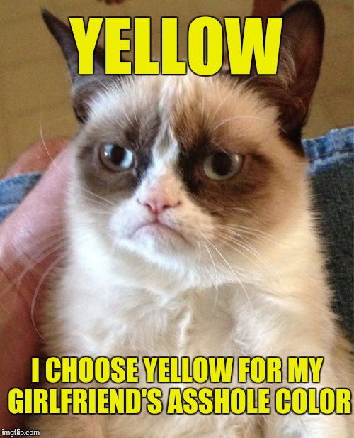 YELLOW I CHOOSE YELLOW FOR MY GIRLFRIEND'S ASSHOLE COLOR | made w/ Imgflip meme maker