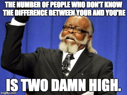 Too Damn High Meme | THE NUMBER OF PEOPLE WHO DON'T KNOW THE DIFFERENCE BETWEEN YOUR AND YOU'RE IS TWO DAMN HIGH. | image tagged in memes,too damn high | made w/ Imgflip meme maker