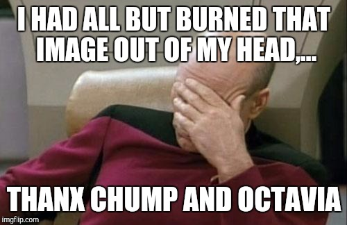 Captain Picard Facepalm Meme | I HAD ALL BUT BURNED THAT IMAGE OUT OF MY HEAD,... THANX CHUMP AND OCTAVIA | image tagged in memes,captain picard facepalm | made w/ Imgflip meme maker