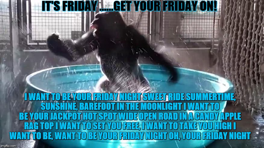 Get your Friday on! | I WANT TO BE YOUR FRIDAY NIGHT SWEET RIDE SUMMERTIME, SUNSHINE, BAREFOOT IN THE MOONLIGHT I WANT TO BE YOUR JACKPOT HOT SPOT WIDE OPEN ROAD  | image tagged in thank god it's friday,dance dance dance,get your friday on | made w/ Imgflip meme maker