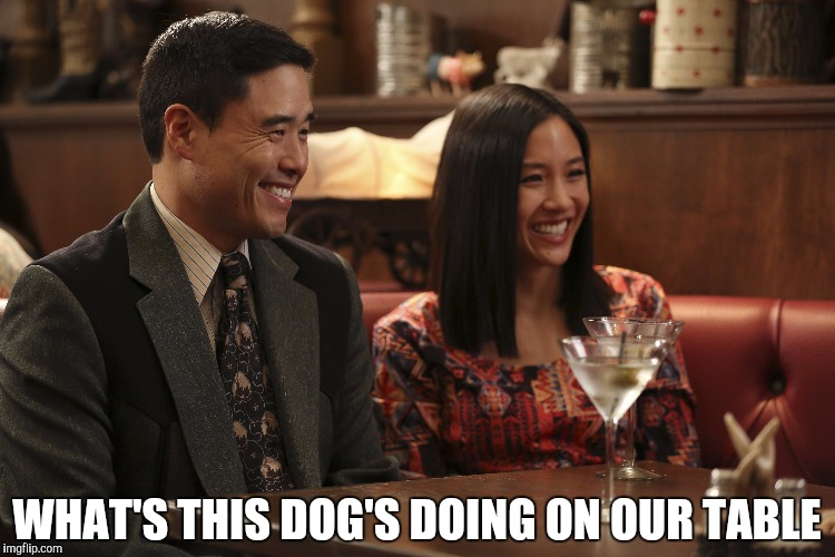 WHAT'S THIS DOG'S DOING ON OUR TABLE | image tagged in chinese | made w/ Imgflip meme maker