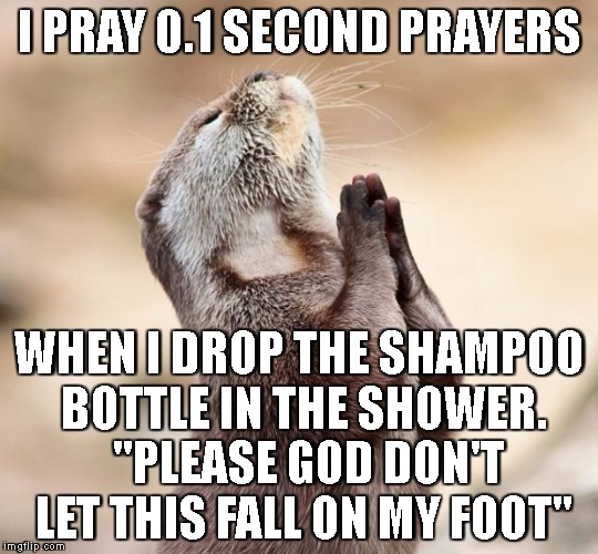 "animal praying | I PRAY 0.1 SECOND PRAYERS WHEN I DROP THE SHAMPOO BOTTLE IN THE SHOWER.  ""PLEASE GOD DON'T LET THIS FALL ON MY FOOT"" 