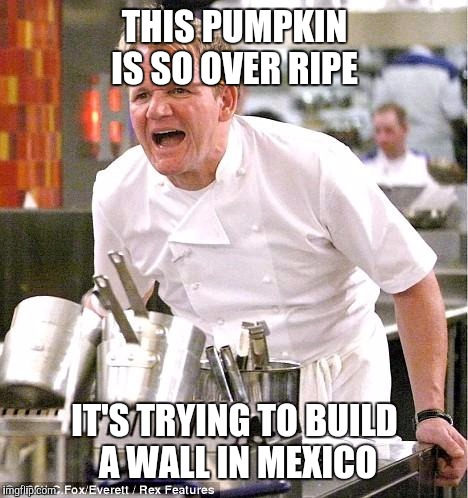 Chef Gordon Ramsay Meme | THIS PUMPKIN IS SO OVER RIPE IT'S TRYING TO BUILD A WALL IN MEXICO | image tagged in memes,chef gordon ramsay | made w/ Imgflip meme maker