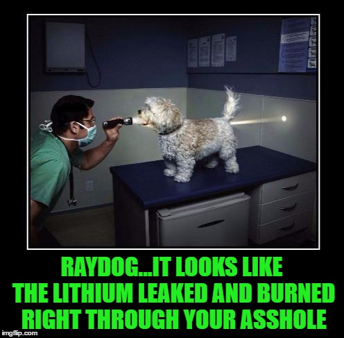 RAYDOG...IT LOOKS LIKE THE LITHIUM LEAKED AND BURNED RIGHT THROUGH YOUR ASSHOLE | made w/ Imgflip meme maker