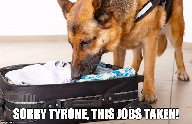 SORRY TYRONE, THIS JOBS TAKEN! | made w/ Imgflip meme maker