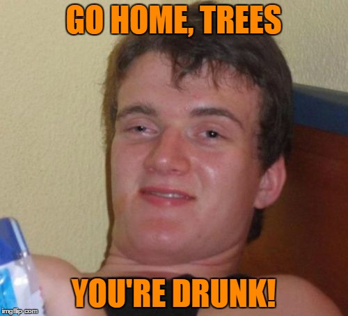 10 Guy Meme | GO HOME, TREES YOU'RE DRUNK! | image tagged in memes,10 guy | made w/ Imgflip meme maker
