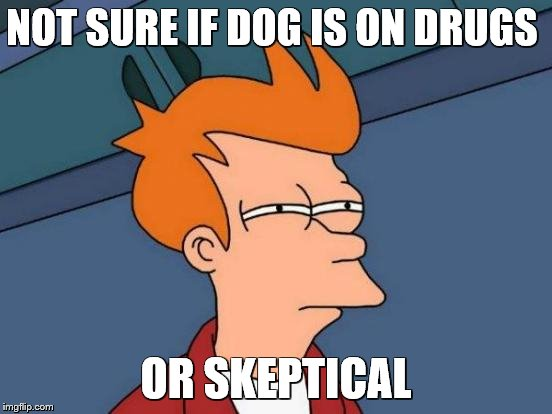 Futurama Fry Meme | NOT SURE IF DOG IS ON DRUGS OR SKEPTICAL | image tagged in memes,futurama fry | made w/ Imgflip meme maker
