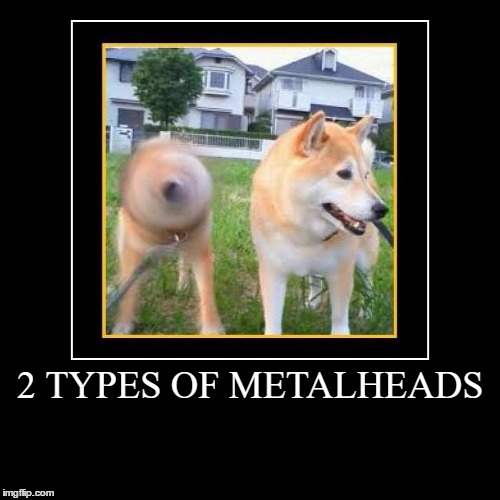 2 TYPES OF METALHEADS | | image tagged in funny,demotivationals | made w/ Imgflip demotivational maker
