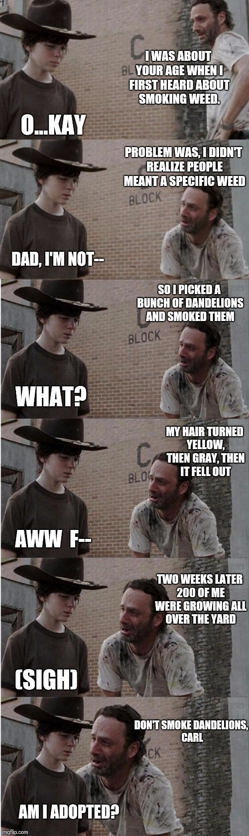 The Walking Dad | I WAS ABOUT YOUR AGE WHEN I FIRST HEARD ABOUT SMOKING WEED. O...KAY PROBLEM WAS, I DIDN'T REALIZE PEOPLE MEANT A SPECIFIC WEED DAD, I'M NOT- | image tagged in memes,rick and carl longer,dandelion,weird,flesh wound,vaginal mesh | made w/ Imgflip meme maker