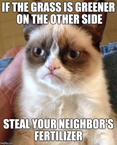 Grumpy Cat Meme | IF THE GRASS IS GREENER ON THE OTHER SIDE STEAL YOUR NEIGHBOR'S FERTILIZER | image tagged in memes,grumpy cat | made w/ Imgflip meme maker