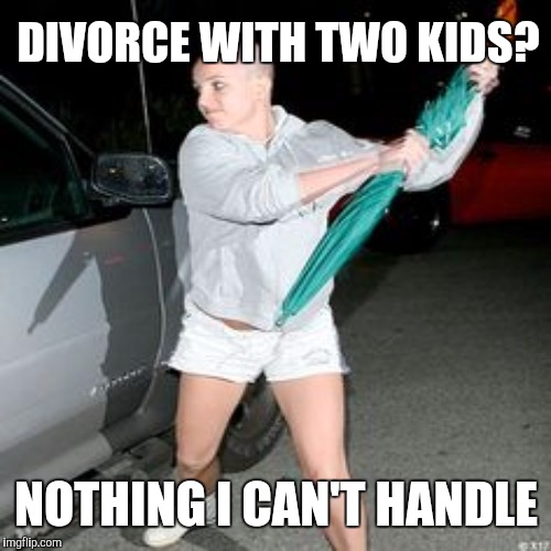 DIVORCE WITH TWO KIDS? NOTHING I CAN'T HANDLE | made w/ Imgflip meme maker