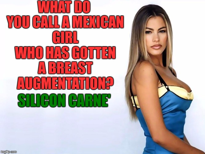 Sofia Vergara's Soul | WHAT DO YOU CALL A MEXICAN GIRL WHO HAS GOTTEN A BREAST AUGMENTATION? SILICON CARNE' | image tagged in sophia vergara,breasts,boob jobs,mexican,funny,funny memes | made w/ Imgflip meme maker