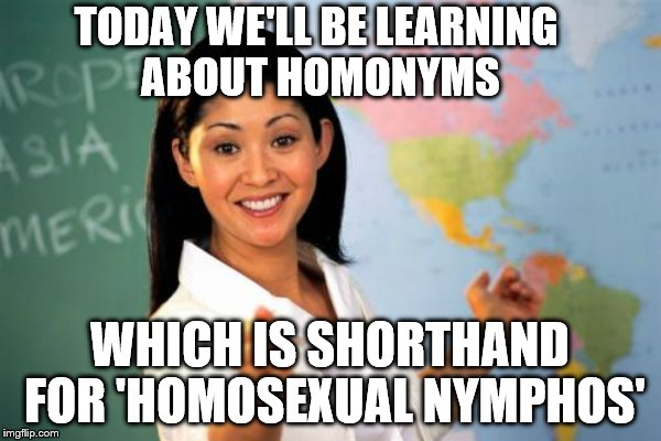 TODAY WE'LL BE LEARNING ABOUT HOMONYMS WHICH IS SHORTHAND FOR 'HOMOSEXUAL NYMPHOS' | made w/ Imgflip meme maker