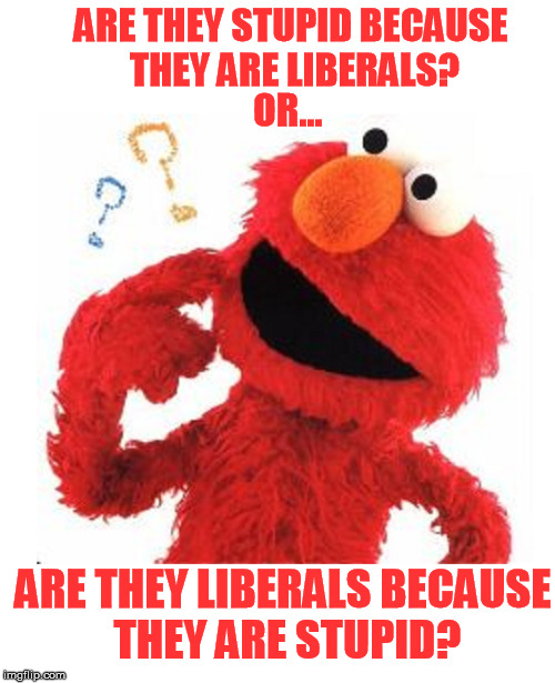 ARE THEY STUPID BECAUSE THEY ARE LIBERALS? ARE THEY LIBERALS BECAUSE THEY ARE STUPID? OR... | image tagged in liberals | made w/ Imgflip meme maker