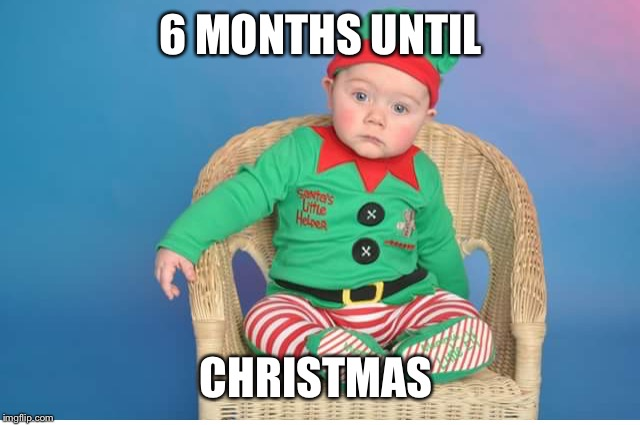 Christmas  | 6 MONTHS UNTIL CHRISTMAS | image tagged in christmas,elf,miserable | made w/ Imgflip meme maker
