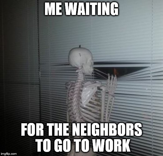 ME WAITING FOR MY SISTER TO PAY ME BACK | ME WAITING FOR THE NEIGHBORS TO GO TO WORK | image tagged in me waiting for my sister to pay me back | made w/ Imgflip meme maker