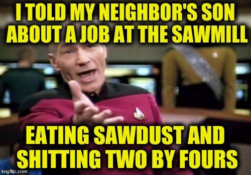 Picard Wtf Meme | I TOLD MY NEIGHBOR'S SON ABOUT A JOB AT THE SAWMILL EATING SAWDUST AND SHITTING TWO BY FOURS | image tagged in memes,picard wtf | made w/ Imgflip meme maker