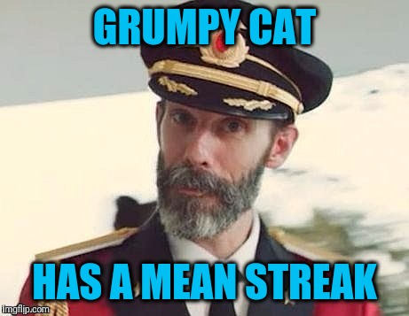 Captain Obvious | GRUMPY CAT HAS A MEAN STREAK | image tagged in captain obvious | made w/ Imgflip meme maker