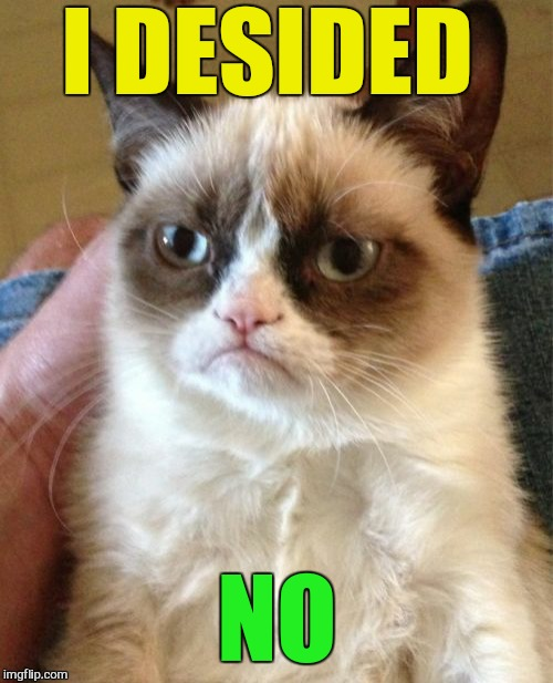 Grumpy Cat Meme | I DESIDED NO | image tagged in memes,grumpy cat | made w/ Imgflip meme maker