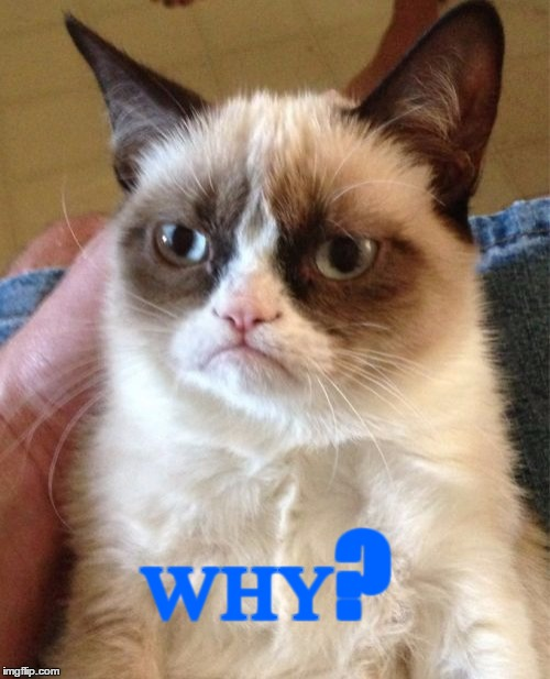 Grumpy Cat Meme | ᴡʜʏ? | image tagged in memes,grumpy cat | made w/ Imgflip meme maker