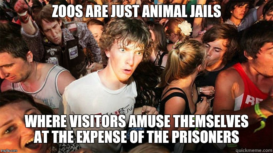 ZOOS ARE JUST ANIMAL JAILS WHERE VISITORS AMUSE THEMSELVES AT THE EXPENSE OF THE PRISONERS | image tagged in sudden clarity clarence large | made w/ Imgflip meme maker
