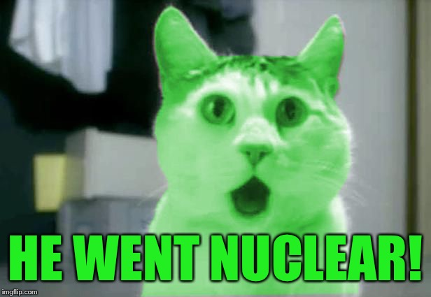 OMG RayCat | HE WENT NUCLEAR! | image tagged in omg raycat | made w/ Imgflip meme maker
