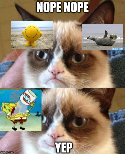 Grumpy Cat Meme | NOPE NOPE YEP | image tagged in memes,grumpy cat | made w/ Imgflip meme maker