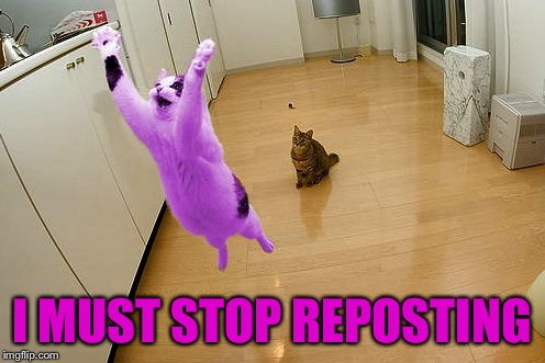RayCat save the world | I MUST STOP REPOSTING | image tagged in raycat save the world | made w/ Imgflip meme maker