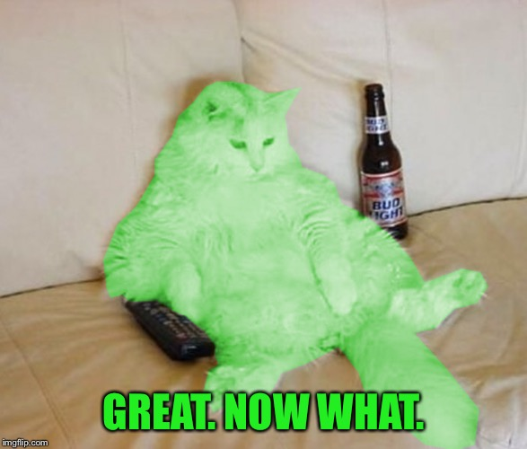 RayCat Chillin' | GREAT. NOW WHAT. | image tagged in raycat chillin' | made w/ Imgflip meme maker