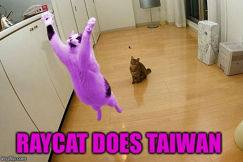 RayCat save the world | RAYCAT DOES TAIWAN | image tagged in raycat save the world | made w/ Imgflip meme maker